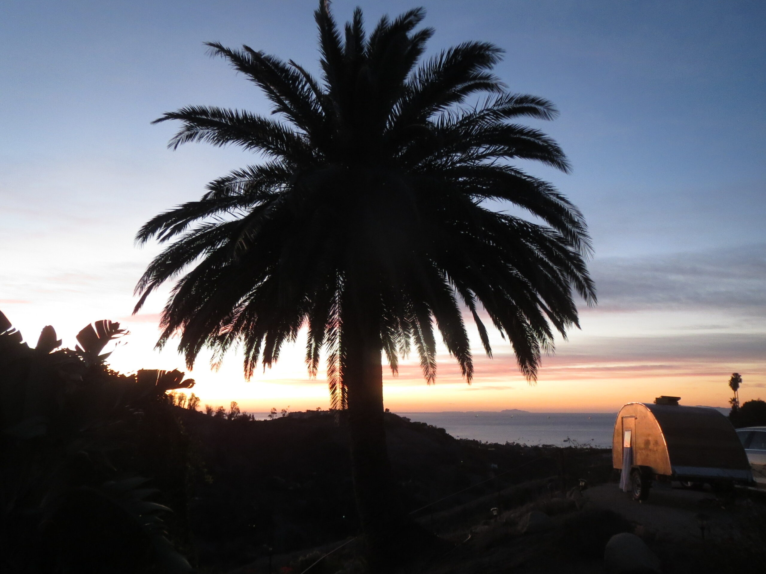 Palm tree and camper at sunset.